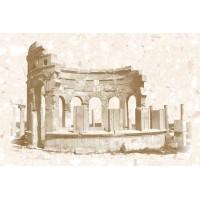 Декор AXIMA Пальмира вставка D 20х30